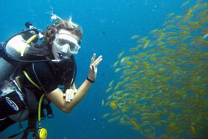 Pattaya Thaimaa sukellus