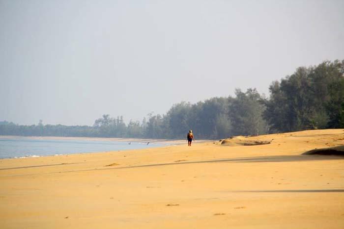 ko phra thong thaimaa