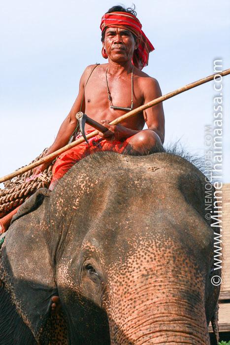 thaimaa mahout