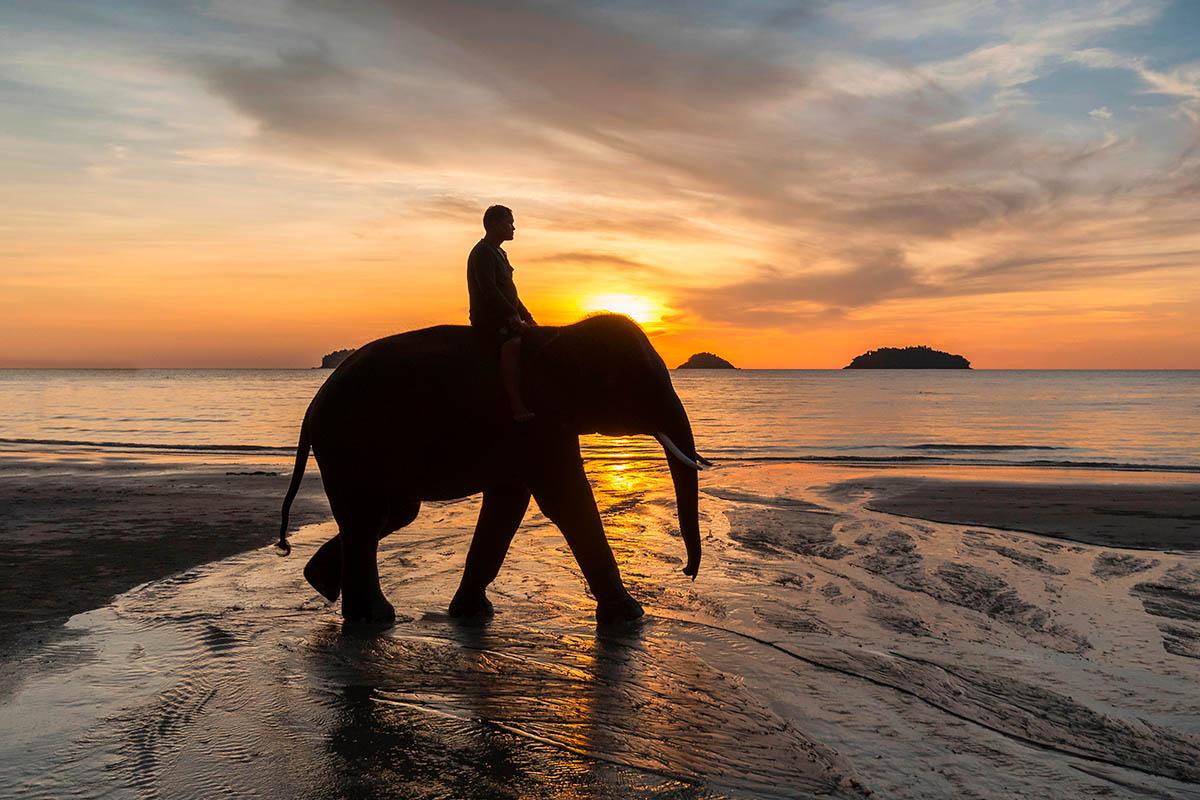 thaimaa koh chang norsu ranta auringonlasku