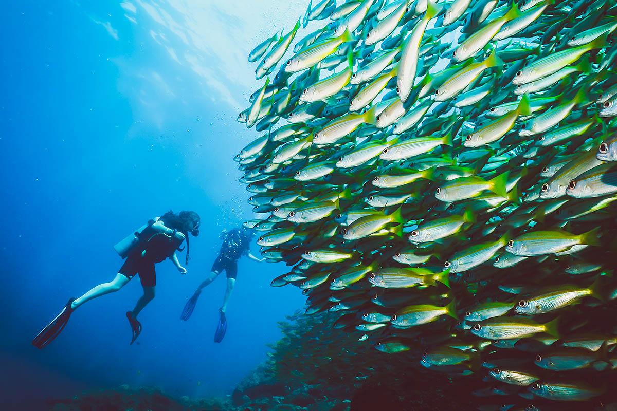 thaimaa phuket sukellus