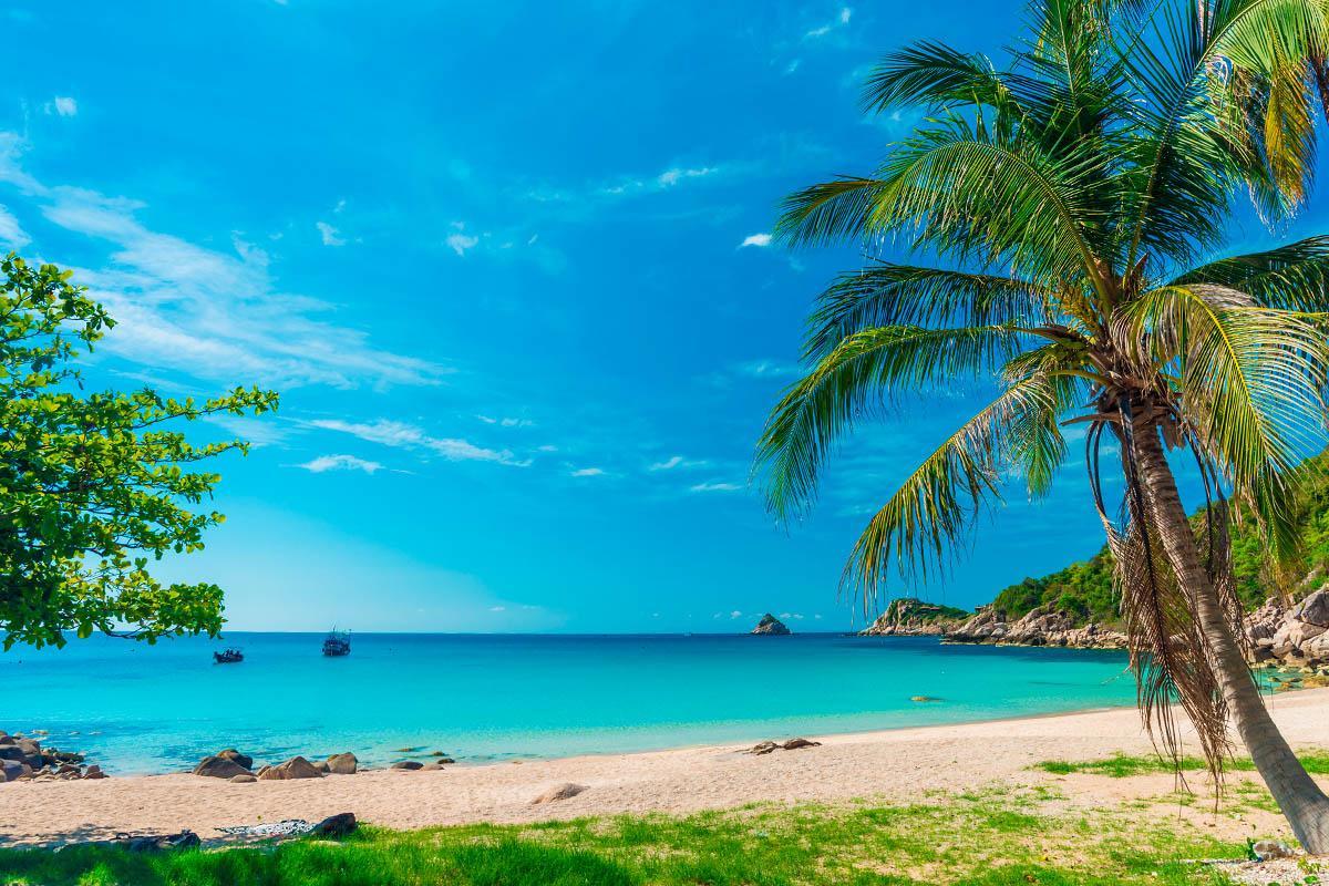 thaimaa koh tao ranta