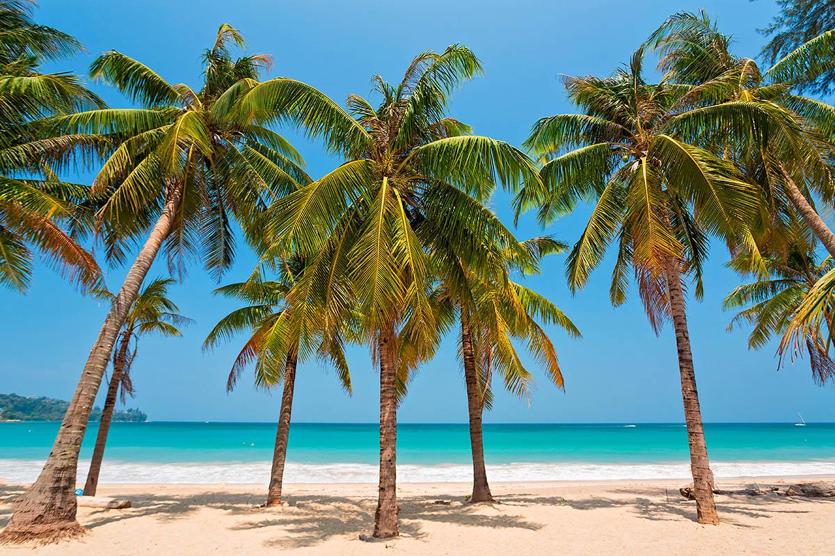 thaimaa phuket ranta kamala